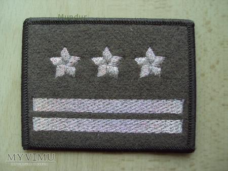Oznaka stopnia - pułkownik SG