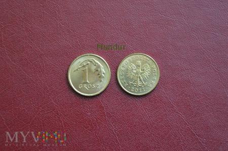 Moneta: 1 grosz od 1995r.