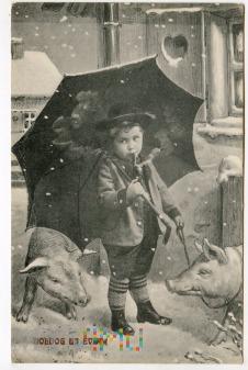 Świnka Noworoczna - 1911