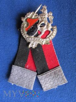 Kotylion Stowarzyszenia Zołnierzy i Weteranów