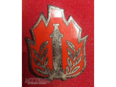 Odznaka wyszkolenia strażaka OSP