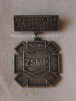 Zasłużony dla ZSMP Przemyśl.
