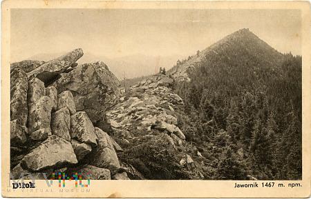 Gorgany - Jawornik 1467 m