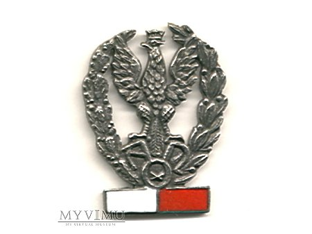 Odznaka AON