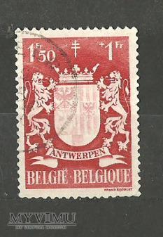 Prowincja Antwerpia.