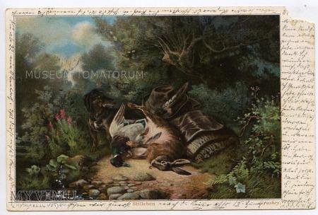 Dachshund - Jamnik myśliwy - 1901