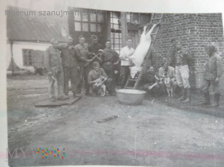 Świniobicie w Bałcie 1941