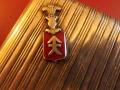 Zobacz kolekcję HERB KOŚCIESZA - inne nazwy i zawołania Strzegomia,Strzegomita.