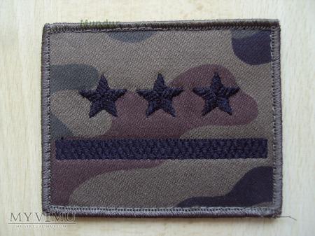 Dystynkcje polowe WP - porucznik