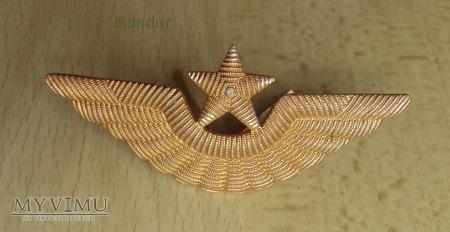 Duże zdjęcie Emblemat do czapek lotnictwa