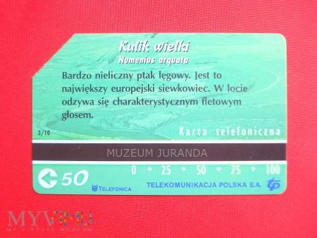 Karta magnetyczna 950