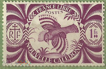 France Libre -Le Kagou