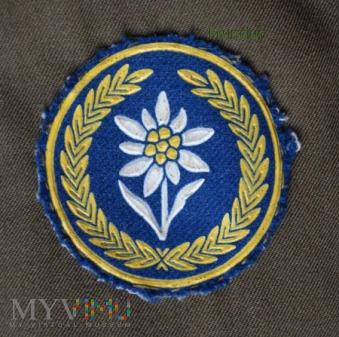 Oznaka 21 Brygady Strzelców Podhalańskich