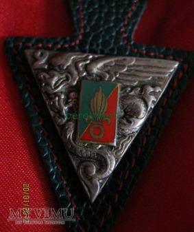 odznaka 2REP(2ème Régiment étranger de parachutis)