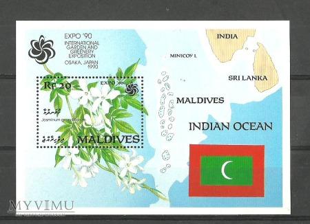 Duże zdjęcie Maldives