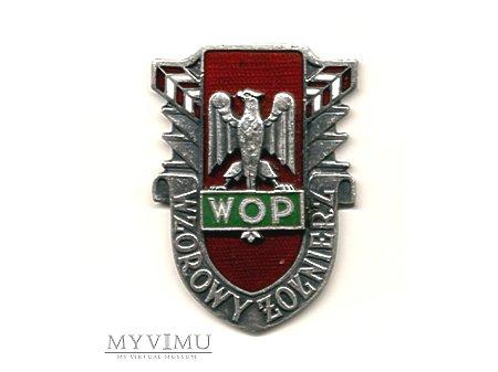 Wzorowy Żołnierz WOP