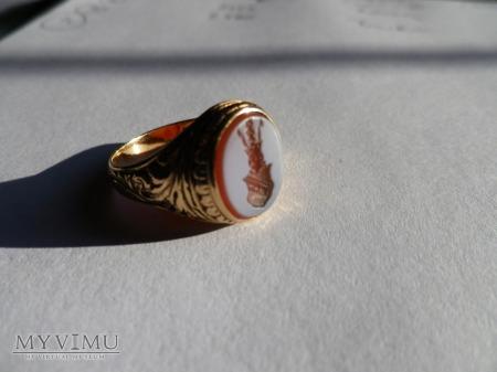 Duże zdjęcie Herb Doliwa-sygnet złoty