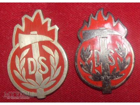 Odznaka wyszkolenia dowódcy sekcji