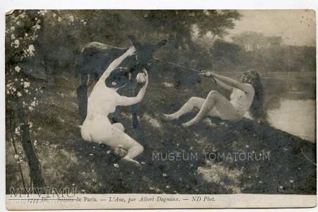 Dagnaux - Akt z osłem