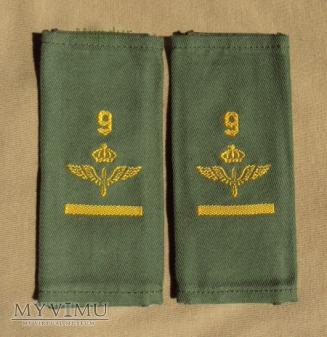 Szwecja - oznaka stopnia flygvapnet: st. szeregowy