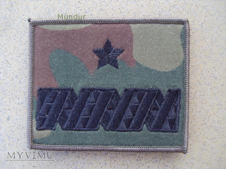 Dystynkcje polowe WP - generał brygady