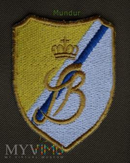 Oznaka rozpoznawcza 9 BKPanc.