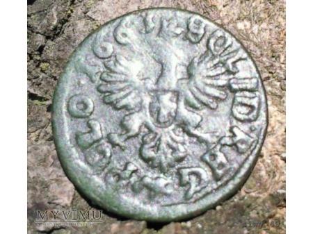 Duże zdjęcie szeląg koronny 1663 17