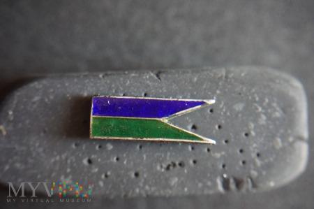 Odznaka niebiesko-zielony proporczyk - miniatura