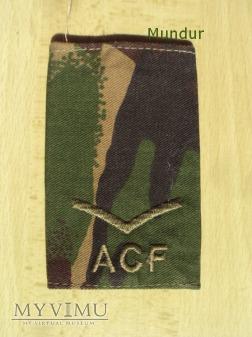 Oznaka stopnia: Army Cadet Force