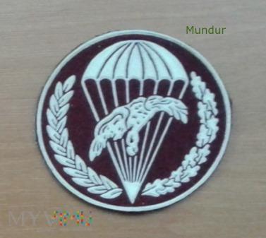 Oznaka 8 batalion zabezpieczenia