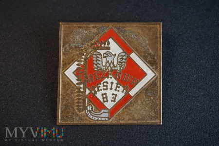 Duże zdjęcie Pamiątkowa odznaka Rezerwy - Jesień 83