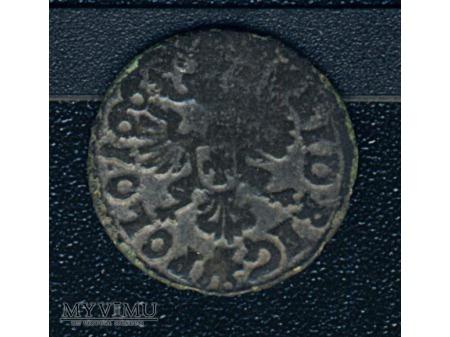 szeląg koronny 1665 4