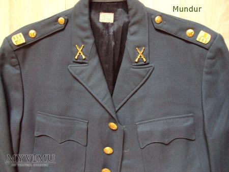 Armén uniform m/60 sierżant Västernorrlands reg.