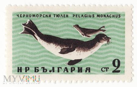 Znaczek pocztowy -Zwierzęta 3