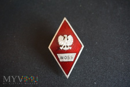 Odznaka Wyższej Oficerskiej Szkoły Samochodowej
