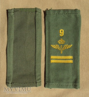 Szwecja - oznaka stopnia flygvapnet: kapral