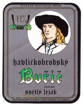 Havlickuv Brod, Buric