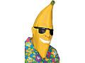 Muzeum Banana