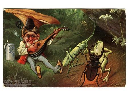 Duże zdjęcie 1906 Krasnal Grzybek Jelonek Żaba Konik Polny