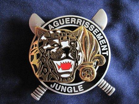 Odznaka C.E.F.E