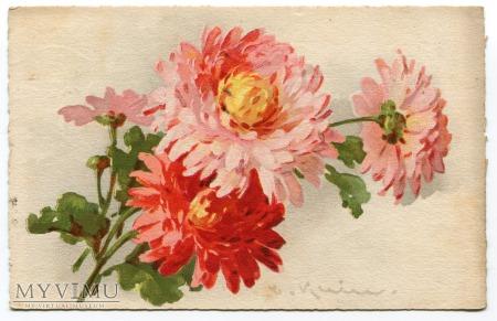 Catharina C. Klein kwiaty Flowers 1929 Pilzen