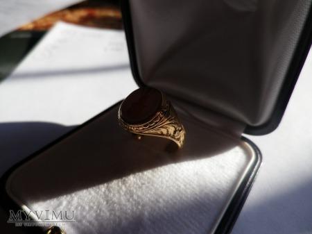 Herb Doliwa-sygnet złoty