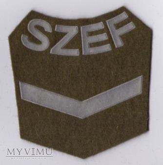 Oznaka SZEF KOMPANII - 4 stopnia