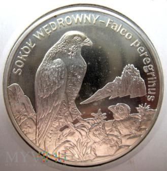 Duże zdjęcie 20 złotych 2008 r. Polska