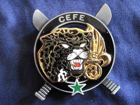 Odznaka C.E.F.E 2
