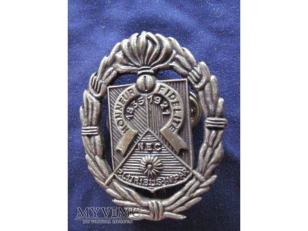 Duże zdjęcie Odznaka 1REC beret/srebrna