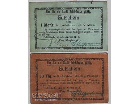 Banknoty zastępcze miasta Trzcianki