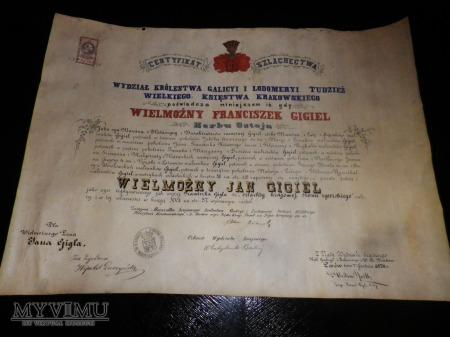 Herb Ostoja- Certyfikat Szlachectwa Gigiel