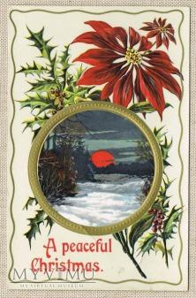 1912 Spokojnych Świąt