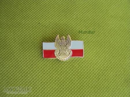 Odznaka patriotyczna WP